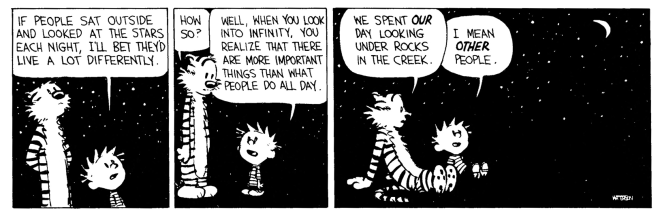 calvin and hobbs- significance.png