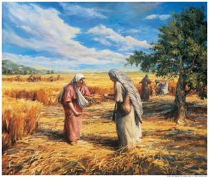 gleaning.jpeg